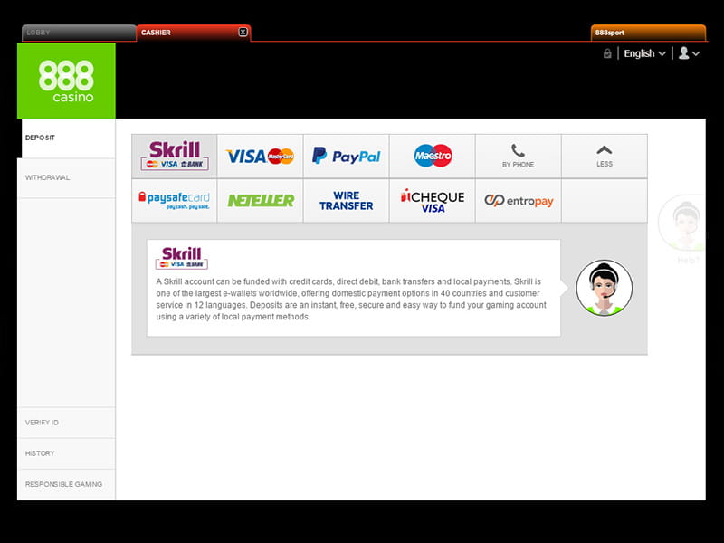 Payment Fees Skrill -917792
