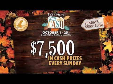 Fall Into Cash -74043
